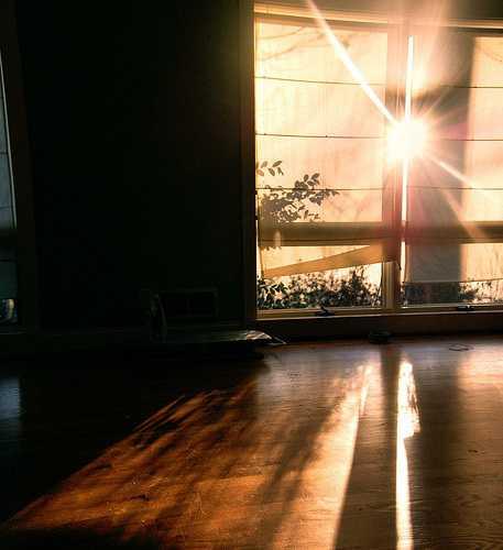 Ánh nắng chiếu thẳng vào phòng